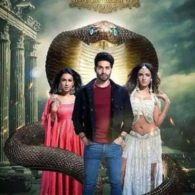 <span>TV</span>Naagin 1 and 3